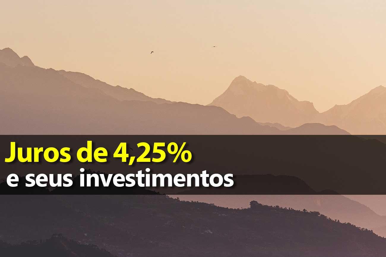 Taxa Selic de 4,25% e seus investimentos